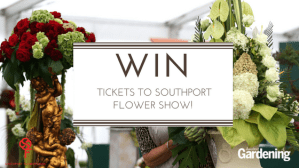 WIN VIP TICKETS TO SOUTHPORT FLOWER SHOW! E:03/08