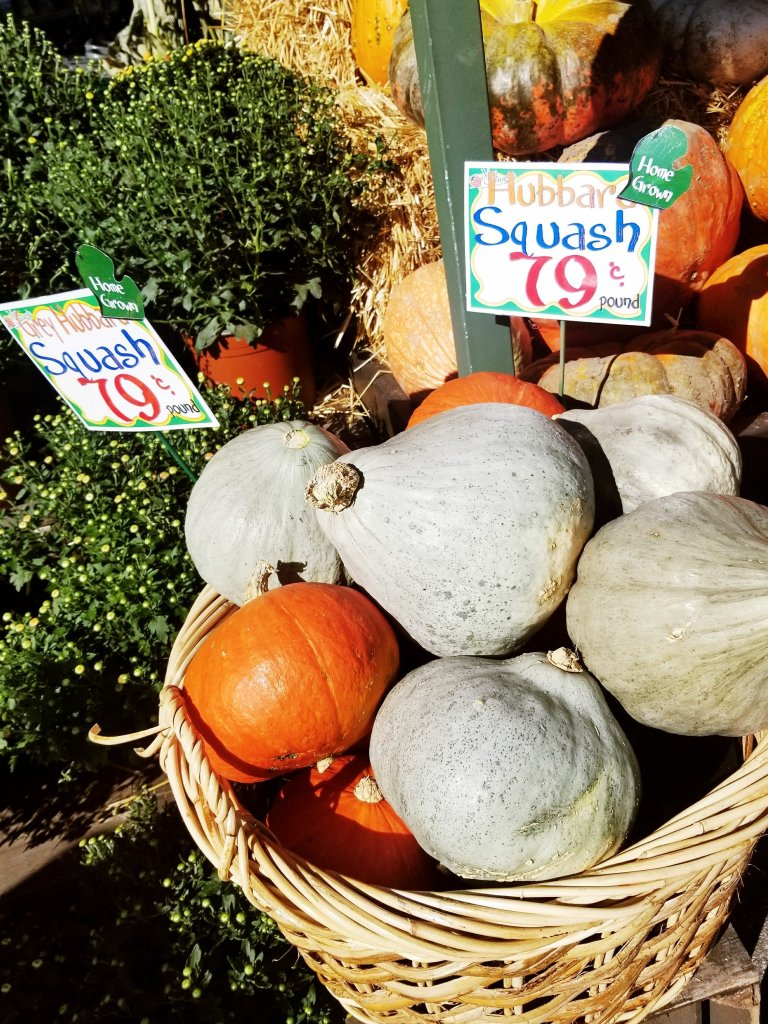 Hubbard Squash at Nino Salvaggio's International Marketplace
