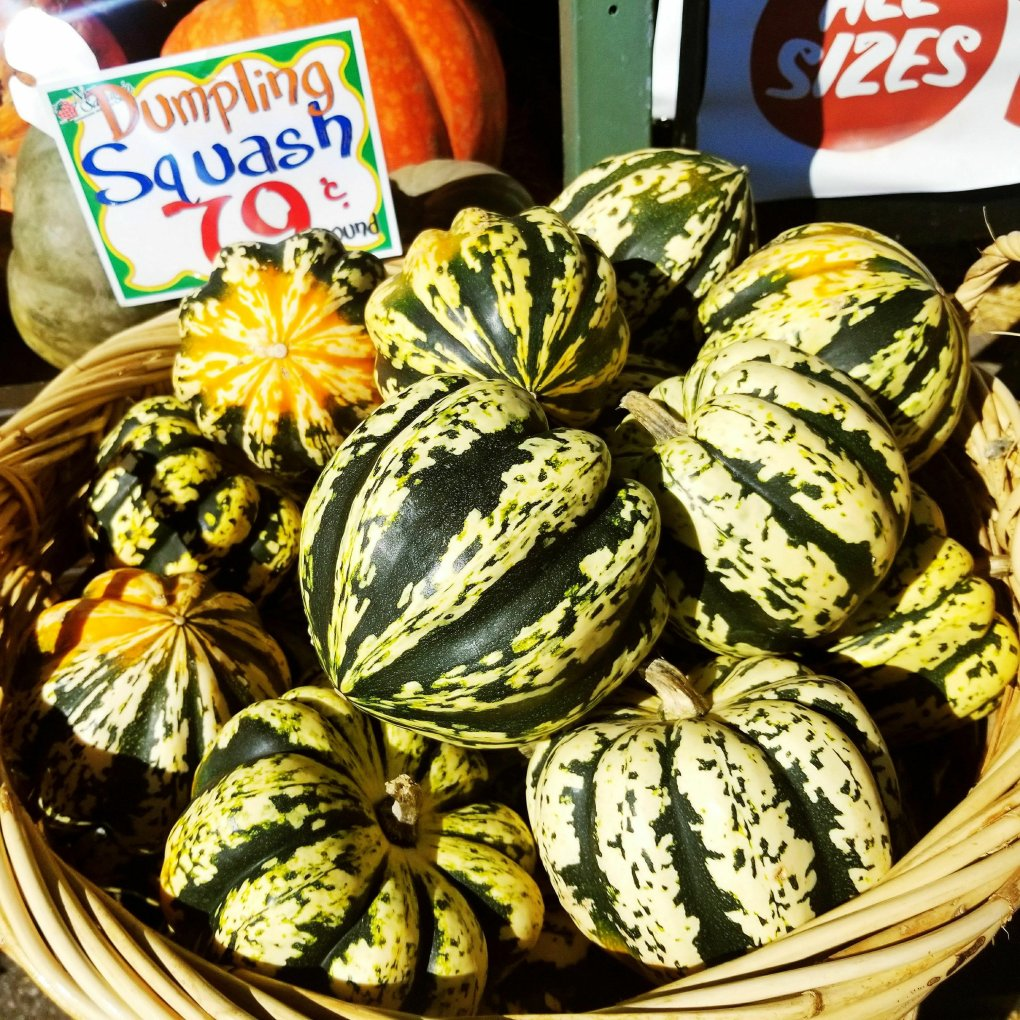 Dumpling Squash at Nino Salvaggio's International Marketplace