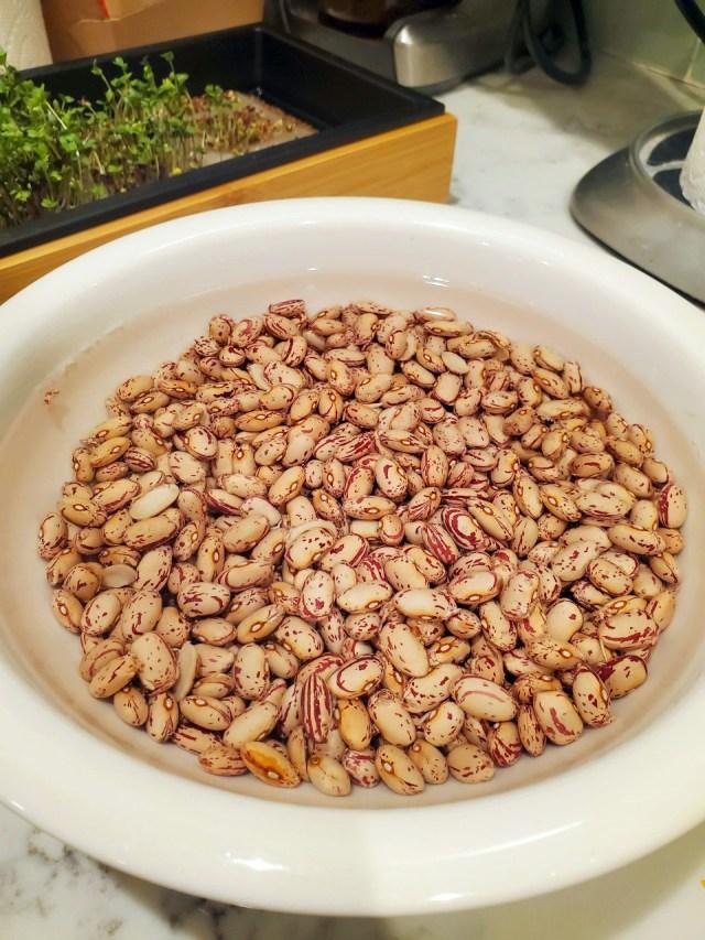 Rancho Gordo Cranberry Beans Soaking