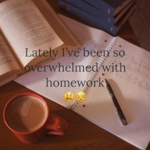 OverwhelmedWithHomework_2017.12.2