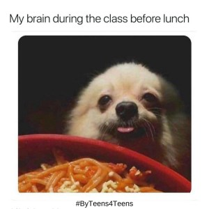 LL-meme-lunch-brain-dog