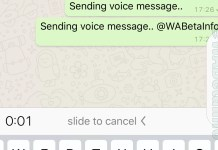whatsapp-LockedRecording_View1