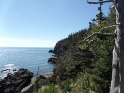 Views along the coast on the hike towards the bog