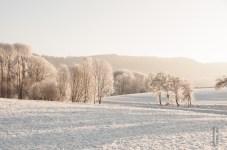 schnee (25 von 26)