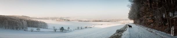 schnee (8 von 26)