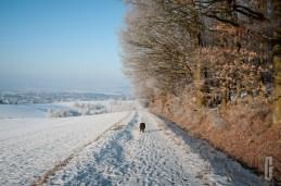 schnee (9 von 26)