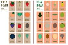 Nutrition: A Printable PDF Organic vs. Store Chart