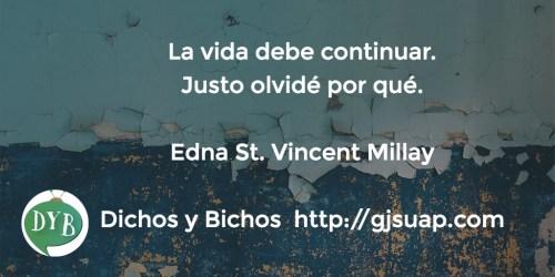 Vida - St. Vincent