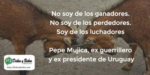 Luchadores . Mujica