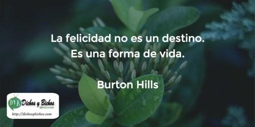 Felicidad - Hills
