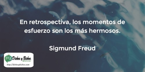 Esfuerzo - Freud