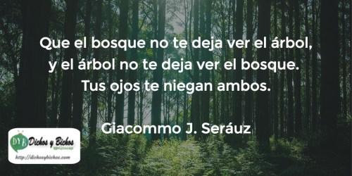 Bosque - Seráuz