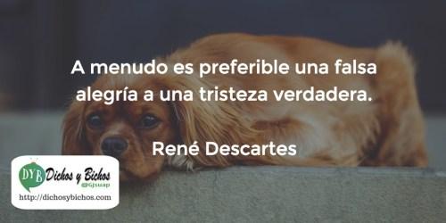 Tristeza - Descartes