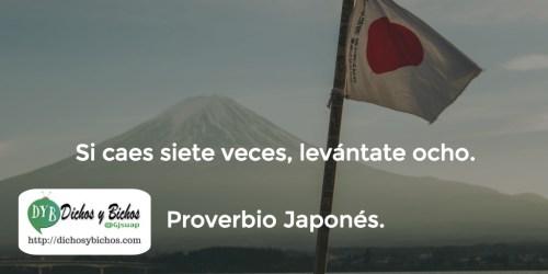 Levantarse - Proverbio Japonés