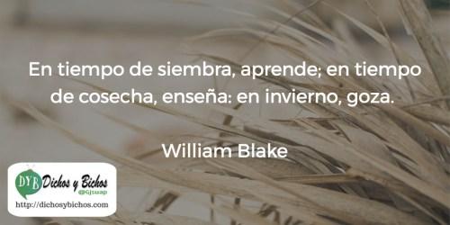 Tiempos - Blake