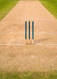 cricket-pitch-wicket-stumps
