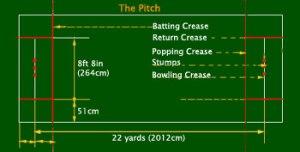 pitch -Cricket