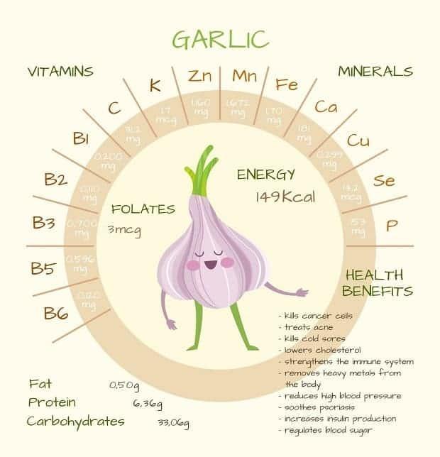 Quais vitaminas estão contidas no alho?