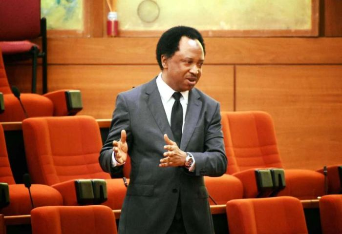 Insecurity: Shehu Sani Queries Tinubu's Call For Employment Of 50 Million Soldiers 1
