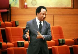 Insecurity: Shehu Sani Queries Tinubu's Call For Employment Of 50 Million Soldiers 2
