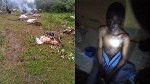 how Thunderstrike Killed 7 Cows, Injured 2 Herdsmen In Kwara (Photo) 1