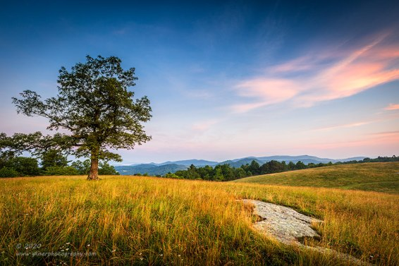 """""""Barefoot Meadow"""", Canon 5D Mk3, 16-35mm f/2.8L Mk2, Singh-Ray Galen Rowell 3-Stop Soft ND Grad"""