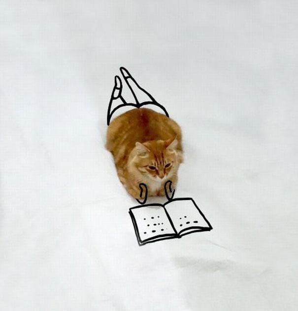 ilustracoes-em-foto-de-gato-gera-imagens-engracadas-1-blog-geek-publicitario