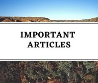 List Of 35 Important Articles of the Constitution