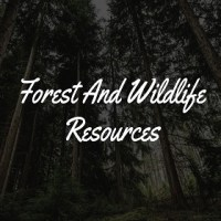 Forest and Wildlife Resources: