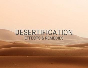 Desertification - Desertification