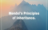 Mendelism