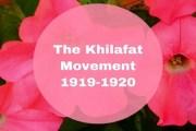 The Khilafat Movement, 1919-1920