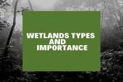Wetland- Types & Importance