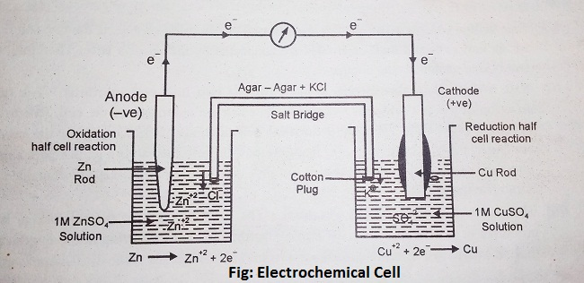 electrochemical cell diagram - Electrochemical Cell