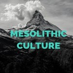 Mesolithic Culture