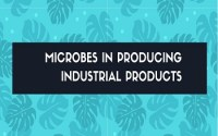 microbes in producing industrial products