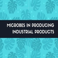 List some beneficial activities of microbes in producing industrial products