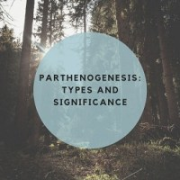 Parthenogenesis: Types And Significance