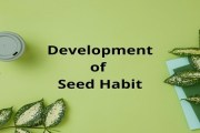 Discuss the development of seed habit. What characters of seed plants make them specially adapted to life on land?