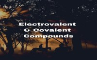 Electrovalent And Covalent Compounds