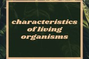 Define living beings. Discuss the important characteristics of living organisms?