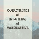 Characteristic of Living Beings at Molecular Level