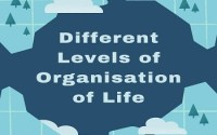 Different Levels of Organisation of Life