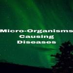Micro-Organisms Causing Diseases