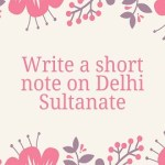 Write a short note on Delhi Sultanate