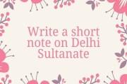 Write a short note on Delhi Sultanate?