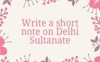 Write a short note on Delhi Sultanate