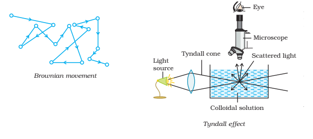 Brownian Movement and Tyndall Effect - Brownian Movement and Tyndall Effect