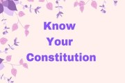 The Big Picture: Know Your Constitution